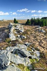 _DSC5999_2_imp (pascalkerdraon) Tags: france bretagne brittany finistere monts darree saint michel braspart rivoal huelgoat paysage landscape lande yeun mont
