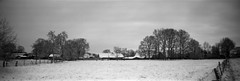 Suddenly winter (Rosenthal Photography) Tags: 20180202 landschaft lochkamera bnw 6x17 schwarzweiss realitysosubtle6x17 ilfordfp4 feld pinhole landwirtschaft bauernhof rodinal15020°c15min städte anderlingen bw februar weide analog winter dörfer siedlungen landscape february snow fields trees farm backyard nature mood blackandwhite mediumformat realitysosubtle rss 70mm f233 ilford fp4 fp4plus rodinal 150 epson v800
