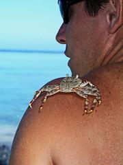 Tatouage virtuel d'un crabe en 3D à Tahiti (Christian Chene Tahiti) Tags: olympus c5050z plage punaauia tahiti man crable homme épaule bleu lagon mer tatouage 3d