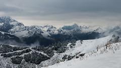 Summer Snow (Netsrak) Tags: alpen baum europa kleinwalsertal landschaft natur nebel schnee wald fog mist snow trees bäume