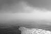 *** (Misha Sokolnikov) Tags: ca california sanfrancisco santacruz sf surfing ocean sea wave fog blackandwhite noiretblanc monochrome leica leicamonochrom leicamm 50mm aposummicron