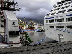 Funchal Port (Tony Tomlin) Tags: funchal madeira port insignia cruiseship harbour wharf ocean anchor