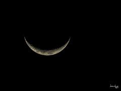 Moon 1 (Daniel Y. Go) Tags: nikon nikonp900 p900 superzoom philippines moon lunar smile night astrophotography