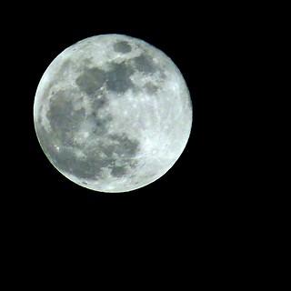 Lede Blue Moon