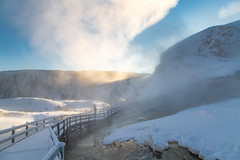 Shadows & steam at Mammoth Hot Springs (YellowstoneNPS) Tags: mammothhotsprings winter boardwalk sunrise