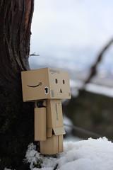 IMG_0214 (SethDanbo) Tags: danbo danboard danbox cardboard cardbox box amazon danbolove teddy yellow brown gundam gunpla snow white winter little tiny actionfigure action figure robot
