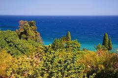 On the Ligurian coast near Bordighera (echumachenco) Tags: sea mediterranean liguria bordighera water blue sky summer july plant vegetation green cypress italy italia italien nikond3100 outdoor landscape seascape nature serene