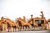 The Holdup (Thomas Hawk) Tags: america arizona rocksandmore usa unitedstates unitedstatesofamerica williams horse sculpture stagecoach fav10