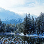 Fresh Snow on a Spring Morning, Yosemite High Country 5-17 thumbnail