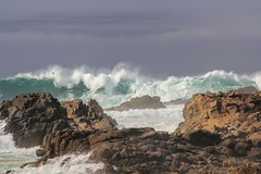 Lace and Stone (GeminEye27) Tags: wave sea rockyshore pacificgrove pointpinos
