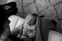 Arthur 12 days new (Carli Nicole Photography) Tags: newbornphotography newborn newbornsession newbornlifestyle babies beauty blackwhite babyphotography lifestylephotography lifestyle lighting naturallight naturallighting natural family sigma 35mm canon love cute harpendenphotographer hertforshirephotographer harpendennewbornphotographer londonphotographer babyphotographer