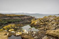 Left Behind (vxisme.) Tags: portencross ayrshire rockyshore arran riverclyde castles olympusem1