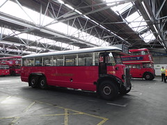 Bromley Open Day 13August 2016 (dsj672) Tags: bromleybusgarage aec renown lt regentiii rt routemaster rm