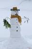 Bonhomme de neige, Beauce, Canada - 4694 (rivai56) Tags: bonhommedeneige beauce canada sonyphotographing hiver winter saintgeorges québec ca snowman
