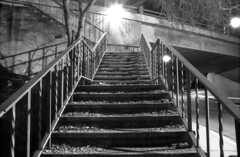 Colorado Street bridge steps (north) (Immane) Tags: pentaxspotmaticii supermulticoatedtakumar 28mmf35 135 35mm film analog aristaeduultra100 fomapan rodinal 125 blackandwhite monochrome bw roll145 losangeles pasadena coloradostreetbridge suicidebridge steps bulb night longexposure