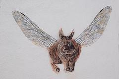 Adey (HBA_JIJO) Tags: streetart urban graffiti vitry vitrysurseine pochoir stencil animal art france hbajijo wall mur painting paris94 adey lapin rabbit peintue