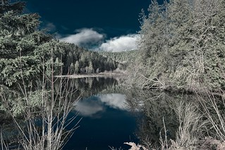 Lilliwaup, Washington
