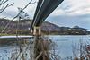 Friarton undergrowth_G5A5943 (ronniefleming@btinternet.com) Tags: friarton hoggweed undergrowth perth perthshire ronnieflemingph31fy scotland 2018
