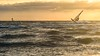 Challenge the waves (Ellen van den Doel) Tags: golven natuur landscape sunset nature water overflakkee outdoor evening zee waves 2017 landschap augustus backlight surfer sport sea zonsondergang brouwersdam ouddorp zuidholland nederland nl