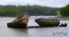 Epaves ( photopade (Nikonist)) Tags: bateaux morbihan kerhervy lanester bretagnesud bretagne apple affinityphoto afsdxvrzoomnikkor1685mmf3556ged nikon imac