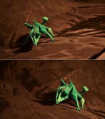 Warrior Spirit (Nikita Vasiliev) Tags: origami origamiart paper paperart chameleon arturbiernacki sword warrior reptile