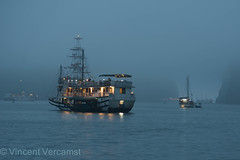 baie de Ha Long (ver-20100) Tags: asia vietnam northvietnam nikon nikond750 sea seabay halong