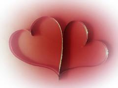 Two Hearts - One Love (Hannelore_B) Tags: macro herz heart myheartwillgoon flickrfriday weeklythemechallenge