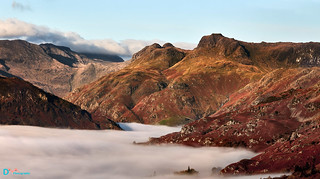 Golden Langdale Pikes