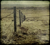 down at the end (jssteak) Tags: canon t1i ttv fence barbwire plains winter colorado