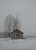 Snowfall (elenakulakova) Tags: abandoned winter snow snowfall nikkor trees tree sky alone house building mood cold 365