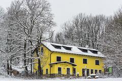 Zum Salzstanglwirt auf der Kugelwiese (a7m2) Tags: wandern natur schutzhütte perchtoldsdorf kaltenleutgeben höllenstein mödling travel loweraustria