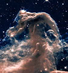 Horsehead Nebula (Kevin M. Gill) Tags: horsehead nebula hubble hst space astronomy