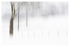 Fences and Trees 2 (AEChown) Tags: fences trees telegraphpoles snow countryside landscape icm intentionalcameramovement blur
