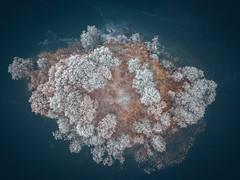 Island | Galve Lake | Aerial #11/365