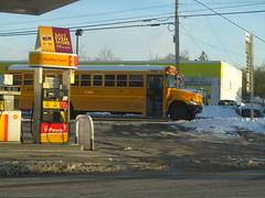West Point Tours #391 (ThoseGuys119) Tags: westpointtoursinc schoolbus ic ce maxxforce7 vailsgateny