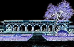 India - Uttar Pradesh - Agra - Diwan-I-Am - 19dd (asienman) Tags: uttarpradesh agra asienmanphotography asienmanphotoart diwaniam india