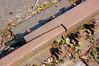 Duisburg - »Landschaftspark Nord« - ehemaliges August-Thyssen-Hüttenwerk (086) (Pixelteufel) Tags: duisburg nordrheinwestfalen nrw landschaftsparknord thyssen stahlwerk hüttenwerk werksgelände industrie industrieanlage industriebrache gleis gleisanlage schiene marode desolat verfallen verrottet verrostet