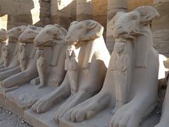 Ram-Headed Sphinxes, Karnak (Aidan McRae Thomson) Tags: karnak temple luxor egypt sphinx sculpture ram statue ancient egyptian