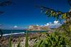 Tangoio Beach Area (rossmberry) Tags: tangoiobeack flatrock napier newzealand pacificocean nativeflax