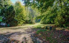 Park view (kud4ipad) Tags: 2015 garden landscape park hdr botanic tree shadow ukraine