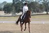 krista4 (allymadesomething) Tags: krista horse show horses ponies parrish oaks farm barn simba thoroughbred