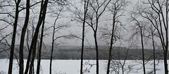 2018_0123Winter-Sucks-Pano0001 (maineman152 (Lou)) Tags: panorama winter winterweather badweather ice icestorm sleet snow slush nature naturephoto naturephotography january maine