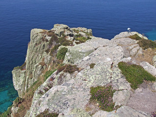 Recording birds and sea, Carn Leskys, near Cape Cornwall