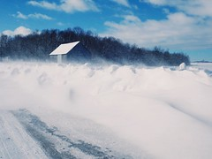 Le vent. (Lise1011) Tags: beautiful olympus poudrerie wind vent neige ngc nature snow winter hiver grange barn