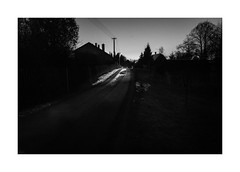 Dog on the road (Jan Dobrovsky) Tags: night leicaq reallife mood rural light countryside road monochrome counrtylife dark dog blackandwhite atmosphere village krásnálípa document