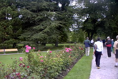 Garden pathway in the Botanical Gardens of  Visby Gotland Sweden. (bellrich1941) Tags: visby gotland sweden park grass tree flower