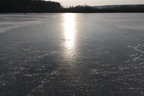 "Frozen ""Prince's pond"""