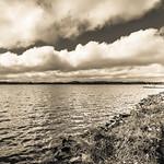 The Lake #19 thumbnail