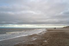 Winter on the beach... (martinstelbrink) Tags: beach strand nordsee northsea baltrum island insel shells muscheln sky himmel surf brandung dünen dunes sony alpha7rii a7rii voigtländervmeclosefocusadapter leicasummicron35mmf20preasph leicasummicron35mmf20i leica summicron 35mm f20 preasph