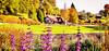 Surronded by Nature (Francesco Impellizzeri) Tags: tumbridge wells england landscape canon trees flowers